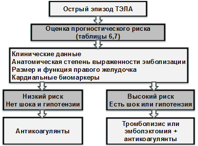 tabb7